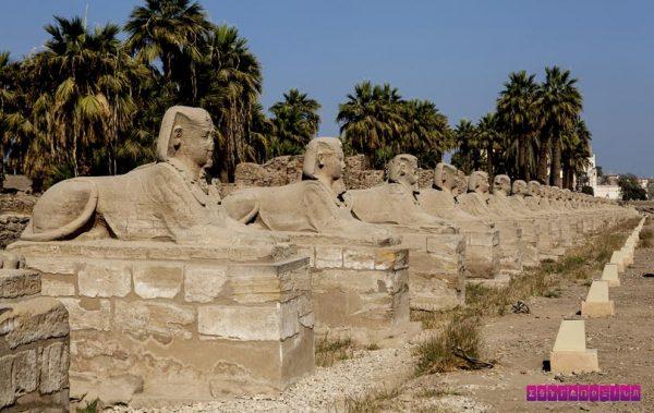 Desfile de esfinges em Luxor