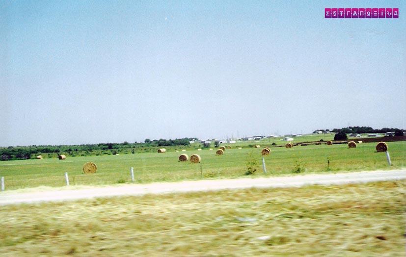 o-que-fazer-no-texas-road-trip