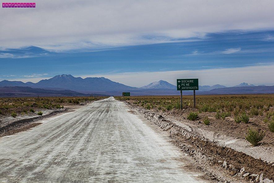 Na estrada indo para as Lagunas Altiplânicas - Atacama - Chile