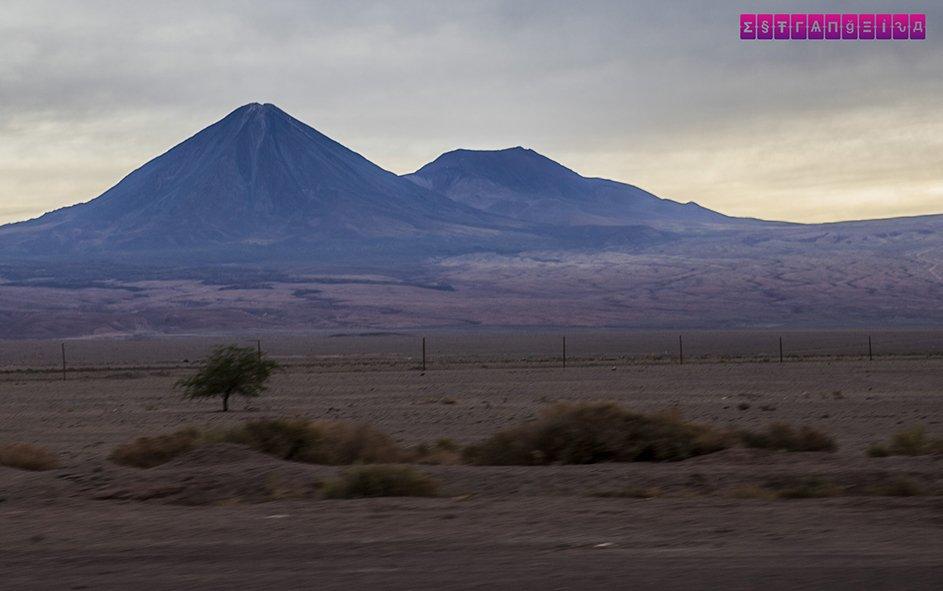 lagunas-altiplanicas-atacama-vulcao-licancabur