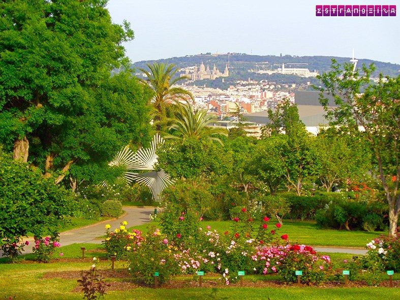 barcelona-na-primavera-temperatura-flores-parque-cervantes