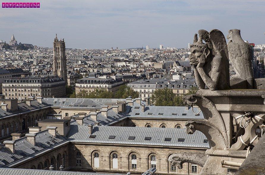 Quimera observa Paris