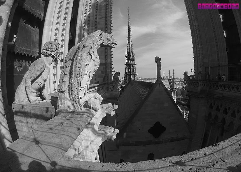 Torres-Catedral-Notre-Dame-Paris