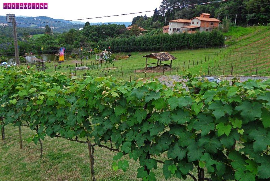 Tem Na Web - Onde ficar em São Roque (interior de SP) - dicas de hotéis e pousadas - Estrangeira