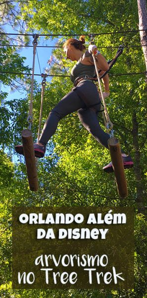 Arvorismo-Tree-Trek-Orlando-pin