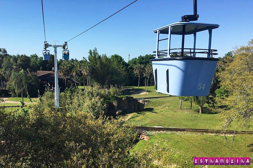 SkyRide, o teleférico do Busch Gardens e a melhor vista!