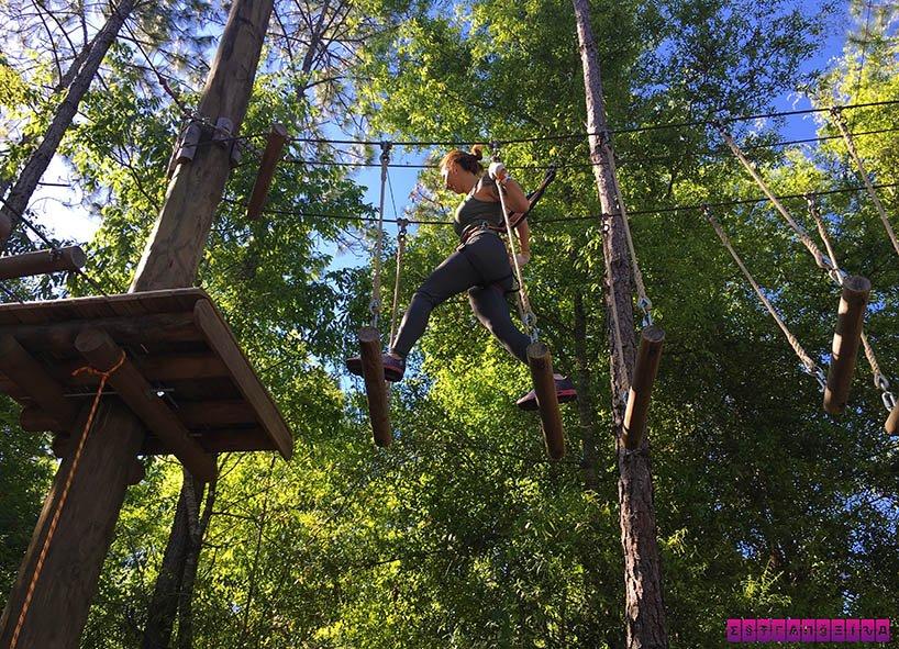 orlando-tree-trek-arvorismo-gabi