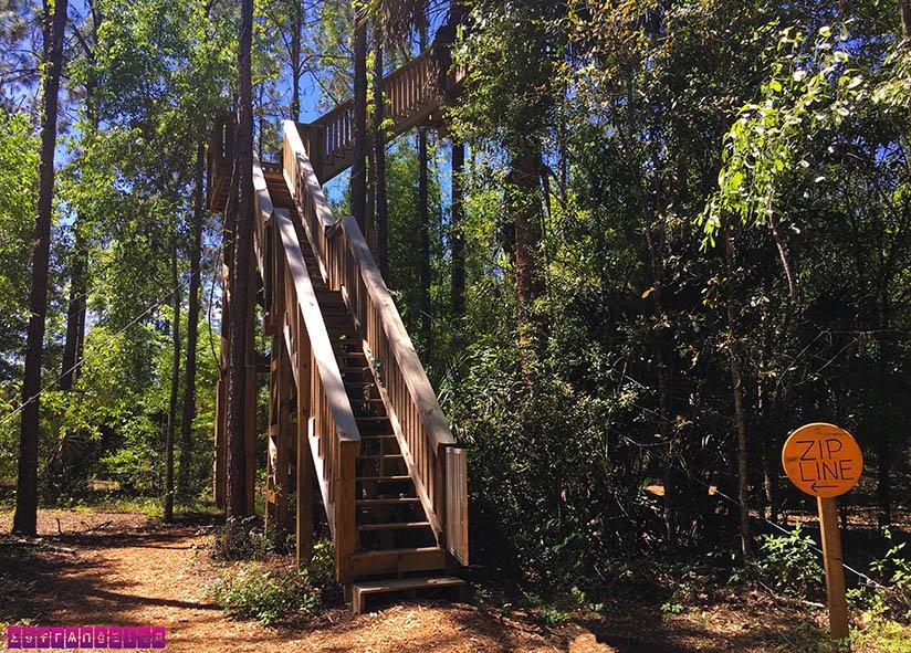 orlando-tree-trek-arvorismo-zipline