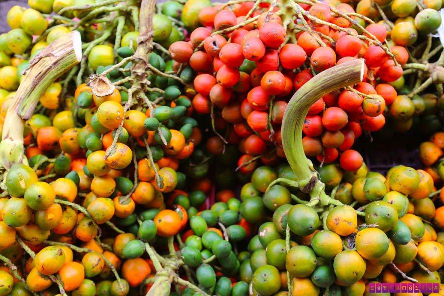 Muitas frutas, muitas cores no Ver-o-Peso!