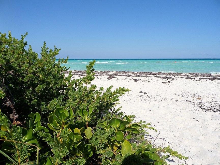 A alguns quilômetros de Santa Clara está o Cayo Santa María, um dos cayos mais lindos da ilha segundo os próprios cubanos. Foto: Renan Fávila.