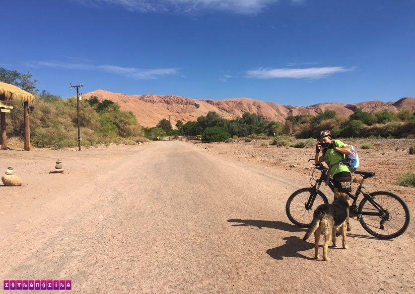 Adrin, nossa guia do La Bicicleta Verde, e o cãozinho aventureiro!