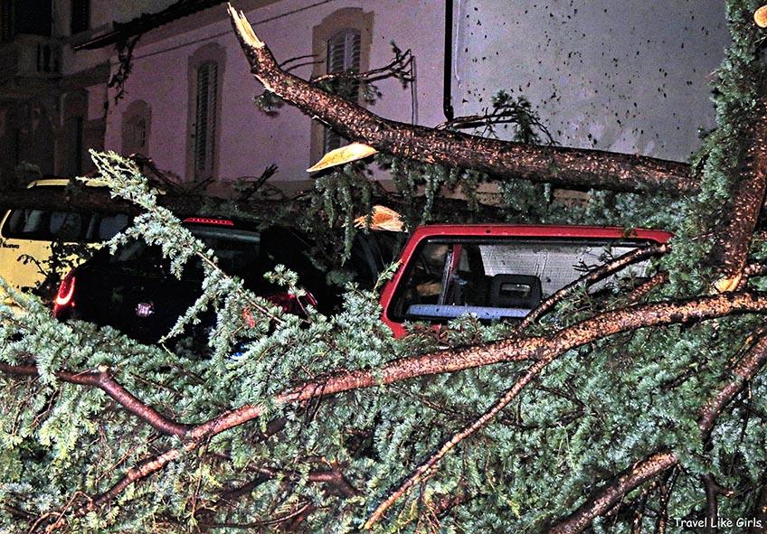 Destruição pós temporal em Florença