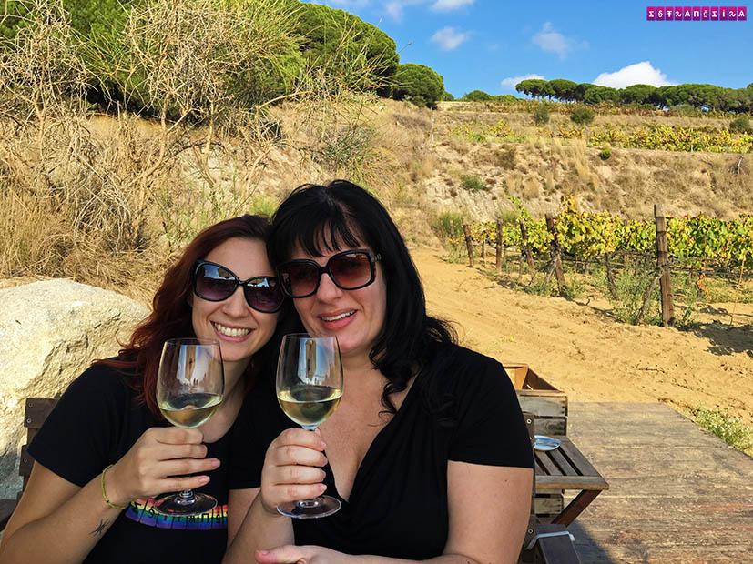 vinhos-passeio-vinicola-maresme