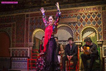 Flamenco-Madri-Torres-Bermejas