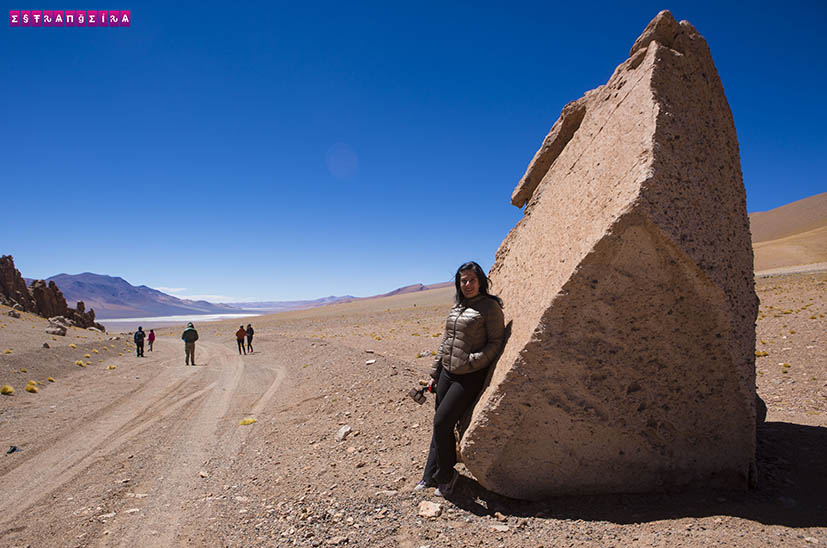Salar-de-Tara-Atacama-Chile-3