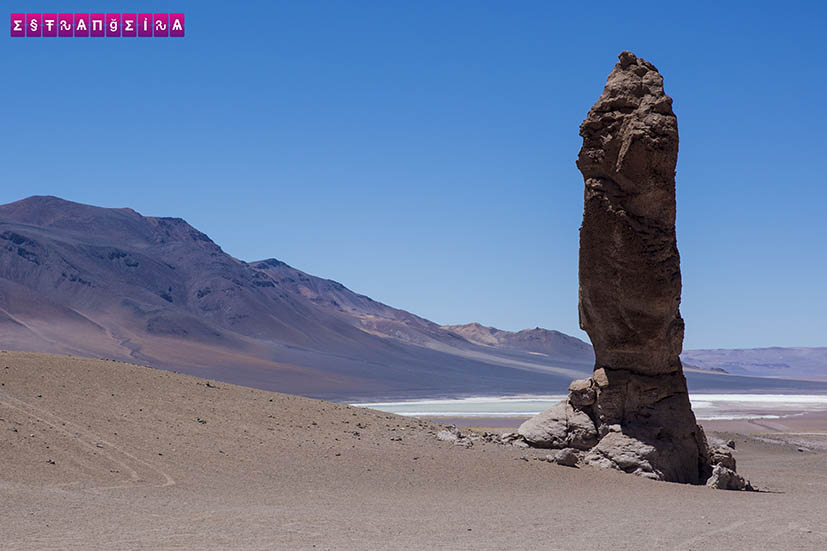 Salar-de-Tara-Atacama-Chile-5
