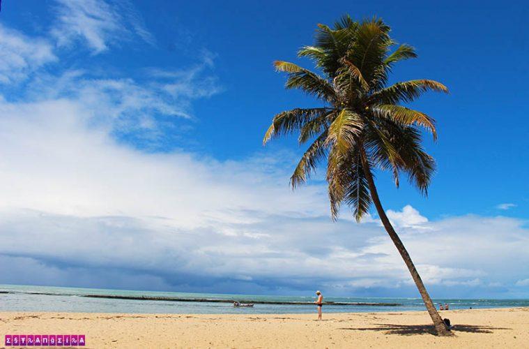 o-que-fazer-em-maceio-Praia-do-gunga-coqueiro