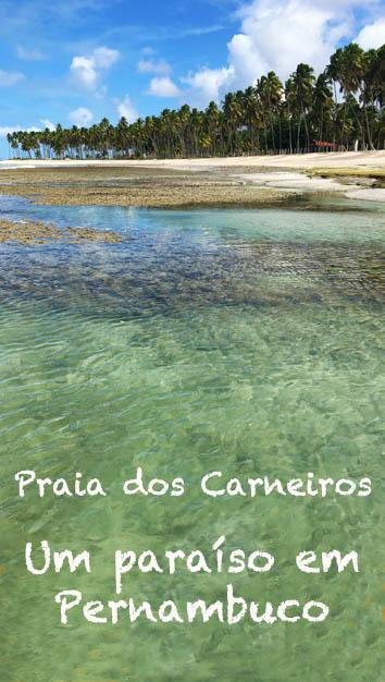 Praia-dos-carneiros-Pernambuco-pin