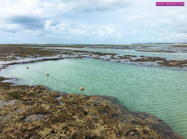 o-que-fazer-em-Porto-de-Galinhas-piscinas-naturais-1