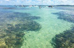 onde-ficar-em-maragogi-piscinas-naturais