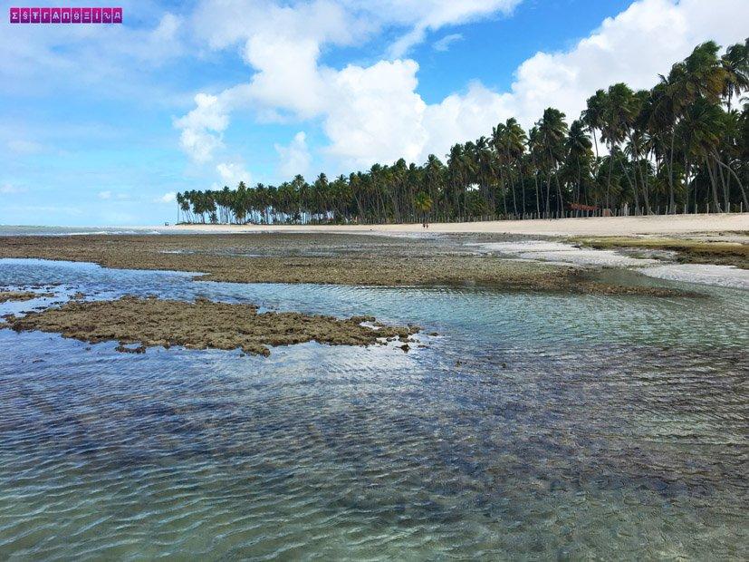 praia-dos-carneiros-piscinas-naturais-1