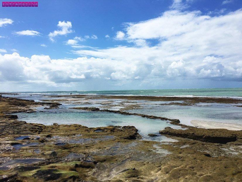 Tem Na Web - Praia dos Carneiros: a praia mais bonita do Brasil - Estrangeira