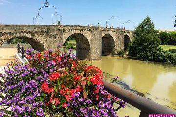 Carcassonne-Franca-ponte-velha-flor