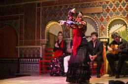 flamenco-Madrid