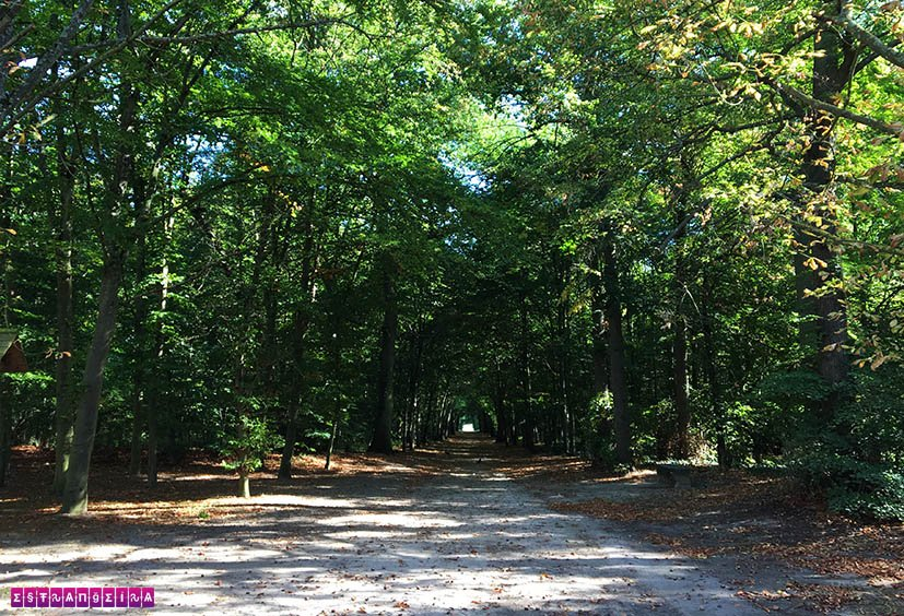 Como-chegar-no-Castelo-de-Chantilly-parque