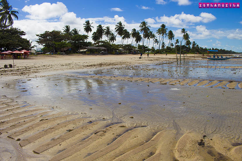 Sao-Miguel-dos-milagres-Alagoas-praia