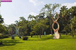 Jardim-botanico-sao-paulo-escultura