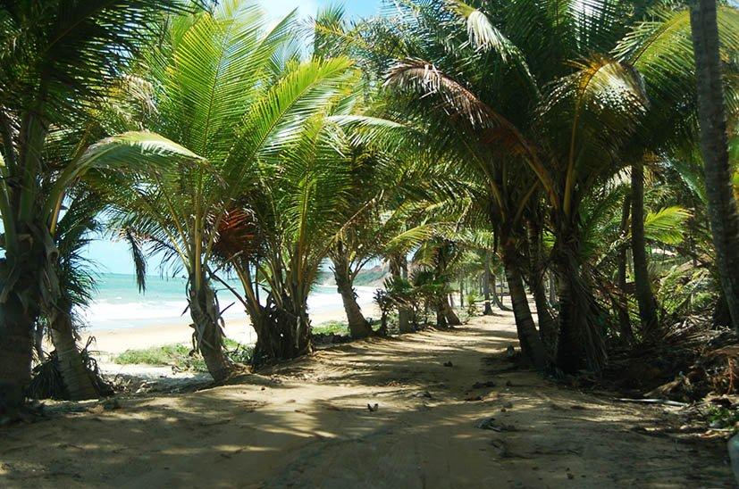 Joao-Pessoa-praia-coqueirinho