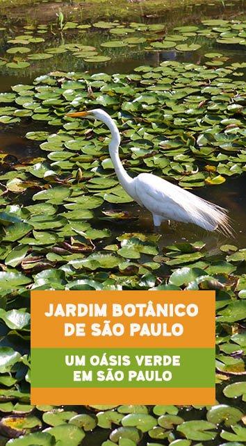 jardim-botanico-sao-paulo-pin