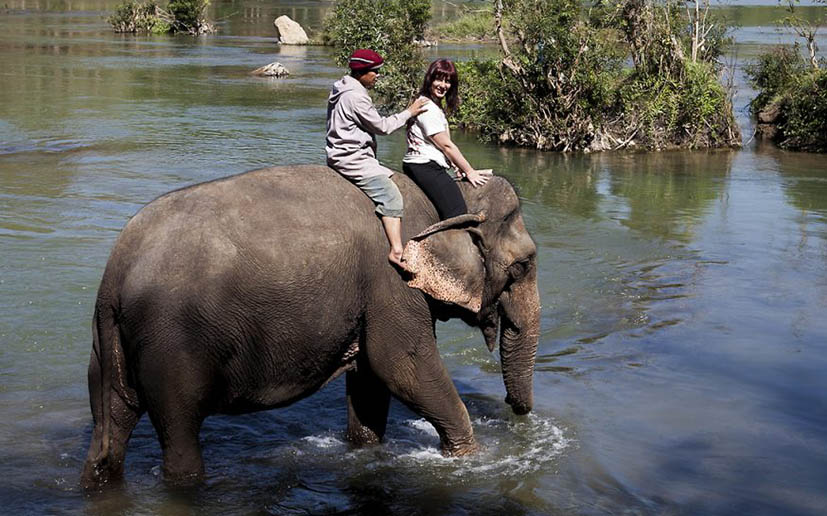 passeio-elefante-luang-prabang-laos
