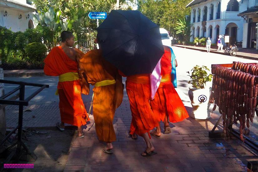 Luang-Prabang-laos-monges2