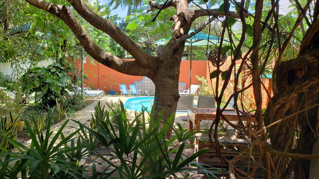 hostel-barato-em-joao-pessoa-caribessa-eco-house