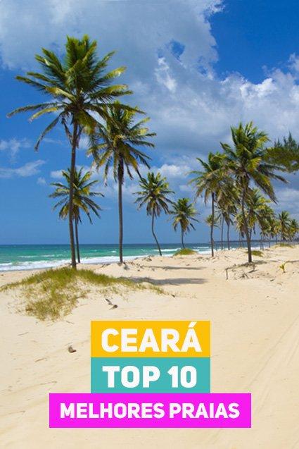 coqueiros em praia de areia branca e mar verde