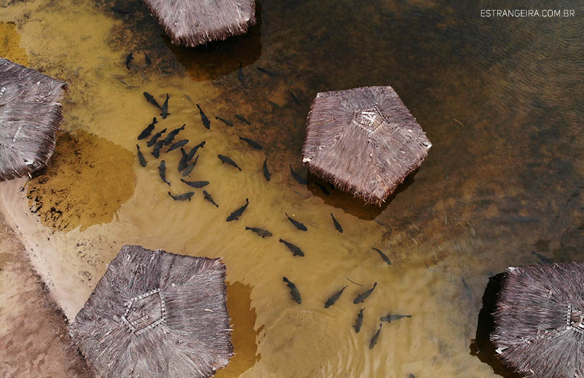 lagoa-dos-tambaquis